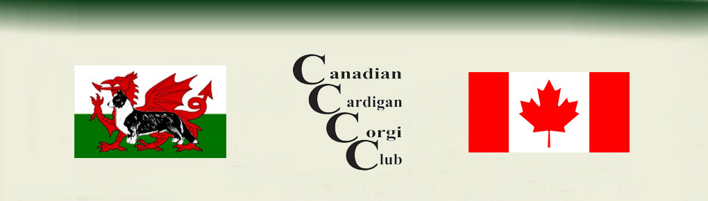 Canadian Cardigan Corgi Club